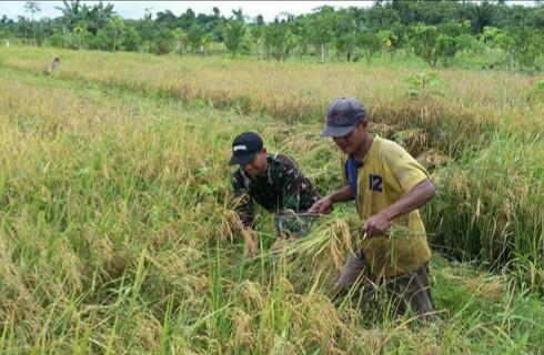 Pasangan YaZa Janji Perbaiki Produktifitas Petani Kabupaten Jayapura