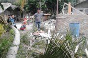 Bocah SD Tewas Tertimpa Pohon Kelapa, Tukang Chainsaw Diamankan
