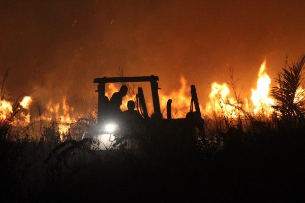 Satgas Kompi Zeni TNI Padamkan Kebakaran Lahan di Pedalaman Afrika