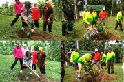 MenjagaKelestarian Alam,Pangdam IM Tanam Bibit Pohon
