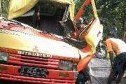 Pohon Kibengang Tumbang Hantam Motor Dan Mobil