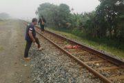 Diduga Stres, Perempuan Tabrakkan Diri Ke Kereta Api