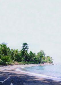 Wisata Ke Pantai Wai Ipa
