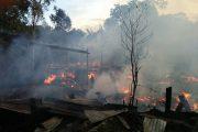 Warga Palawa,Sesean,Enam Rumah Warga Terbakar