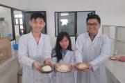 Dari Ubaya, Inilah Keju Lunak Berbahan Alami Indonesia