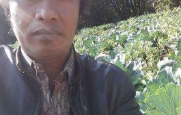 Cuaca Tak Menentu Harga Sayur Petani Tengger Anjlok.