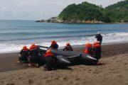 Peninjauan Latihan Praktek Siswa Pendidikan Intai Amfibi Angkatan – 43 Di Puslatpur Lampon Banyuwangi
