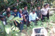 Tanaman Ganja Ditemukan Aparat di Toraja