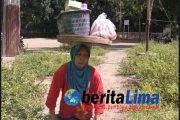Miris !! Nenek Miskin Tuna Daksa di Situbondo Luput Dari Perhatian Pemerintah