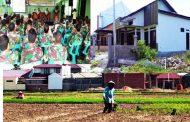 Beras Impor dari Luar Negeri, Sawah di Aceh Jadi Lahan Rumah