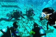 Meriahkan Hari Coral Nasional, Personil TNI Tanam Terumbu Karang