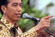 Kunker Jokowi Ke Papua Tanpa Spanduk Bergambar Presiden