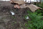 Ilegal loging Marak di Desa Sum