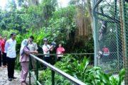 Presiden Jokowi dan Keluarga Nikmati Liburan di Kebun Binatang Ragunan