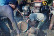 Petani Bungkaih Kritis Di Tubruk Hand Traktor, Pelaku Orang Bayaran Koperling