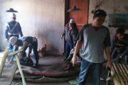 Pomal Lantamal V Grebek Praktek Perjudian Sabung Ayam di Driyorejo