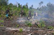 Gunakan Aplikasi Lapan Fire Hotspot, Kodim Aceh Selatan Deteksi 4 Titik Kebakaran