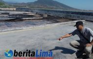 Garam Langka dan Mahal, Petani Garam Satu – Satunya di Situbondo untung Ratusan juta