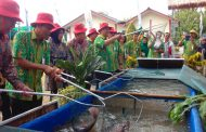 Petro Agrofood Expo, PG Pamerkan Produk Hasil Riset