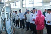 Palembang Segera Miliki Rumah Pemotongan Hewan Terbesar Di Indonesia