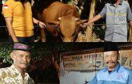 Ketua DPC Hanura Jombang Serahkan Hewan Kurban