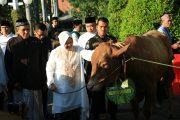 Pesan Walikota Surabaya Di Hari Raya Idul Adha